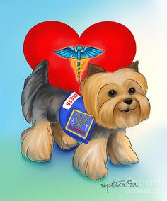 Medical Alert Yorkie Mixed Media by Catia Cho - Medical Alert Yorkie Fine Art Prints and Posters for Sale