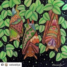 Família morcego! #Repost @weiweiliya ・・・ The bats in tropical wonderland!…