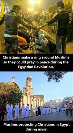 Cristiani che proteggono musulmani e viceversa.                                                                                                                                                                                 Más
