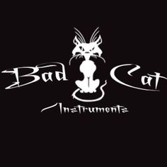 Bad Cat Instruments delivers affordable high-end electric guitars, acoustic guitars, electric bass guitars, and DIY guitar kits to your door. Guitar Kits, Bad Cats, Instruments, Guitars, Fun, Design, Fin Fun, Tools, Design Comics