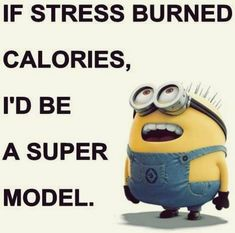 Best Ever Minion Quotes Collection #funny #humor