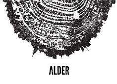 ALDER_Website-Home-White.png