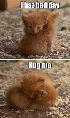 I haz bad day, need hug