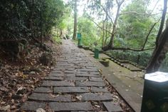 stone laden path within the  Leisure Zone, Themala