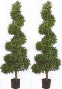 Two 6 Foot Artificial 20 Inch Extra Wide Boxwood Spiral Topiary Trees Potted