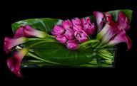 Elegant Flowers, Unique Flowers, Beautiful Flowers, Ikebana, Arte Floral, Modern Floral Arrangements, Flower Arrangements, Modern Floral Design, Table Flowers