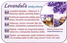 Levanduľa - liečivé účinky, levanduľový čaj | Peknetelo.eu Raw Food Recipes, Diet Recipes, Healthy Recipes, Medicinal Herbs, Natural Medicine, Wellness, Soul Food, Planer, Food Art