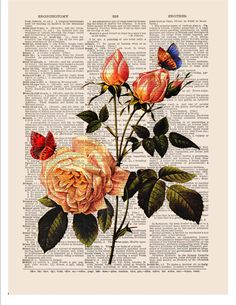 Artículos similares a Yellow rose art wall art digital print on dictionary or music page Butterfly Dictionary art print Wall decor Sheet music No. Decoupage Vintage, Vintage Paper, Book Page Art, Book Art, Newspaper Art, Dictionary Art, Anatomy Art, Painted Books, Fashion Collage