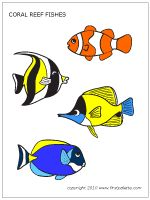 Coral Reef Fish Drawings