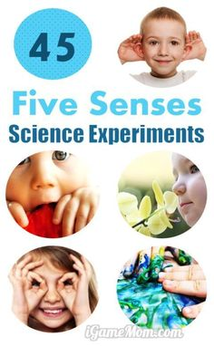 How to teach kids about the 5 senses? These 45 science experiments not only teach kids about senses of touch, see, smell, taste, hear, but also scientific thinking and methodology - for preschool, kindergarten, to high school. Fun STEM activities for  Five Senses in classroom, homeschool, or after school supplements. Many are also great science fair project ideas.