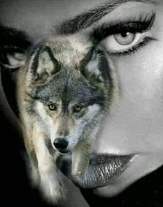 Wolves And Women, Wolf Artwork, Wolf Spirit Animal, Wolf Quotes, Timber Wolf, Wolf Love, Wolf Pictures, Wolf Girl, Wolf Tattoos