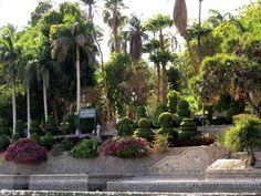 Botanical Garden And Elephantine Island