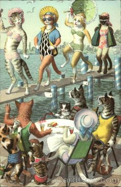 Cats as bathing beauties - Publisher: Alfred Mainzer