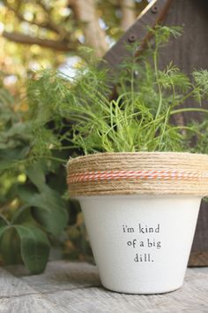 6 I& Kind of a Big Dill Indoor Herb Garden Cute Potted Plants, Garden Plants, Indoor Plants, House Plants, Herb Plants, Rock Plants, Potted Garden, Indoor Herbs, Succulent Planters