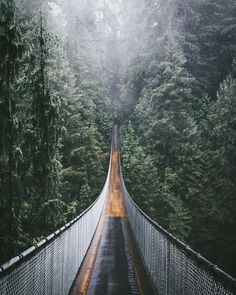 Vancouver's Capilano suspension bridge.