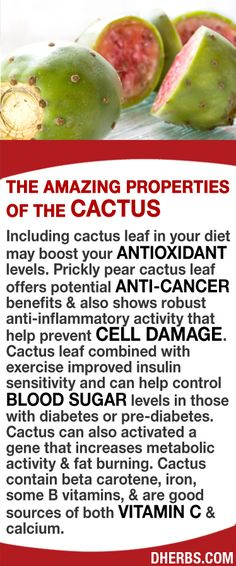 Including cactus leaf in your diet may boost your antioxidant levels. Cactus leaf offers potential anti-cancer benefits & also shows robust anti-inflammatory activity that help prevent cell damage. Combined with exercise it improves insulin sensitivity & can help control blood sugar levels in those with diabetes. Cactus can also activated a gene that increases metabolic activity & fat burning. Cactus contain beta carotene, iron, B vitamins, & are good sources of both vitamin C & calcium. #dh...