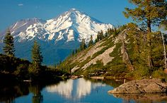 Shasta Cascade
