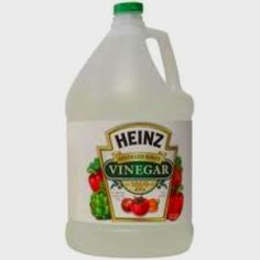 Behold the awesomeness of vinegar!  Put 1 c vinegar and 1 c water in your gross microwave for 10 min on high. This will steam clean the junk and then you just wipe out the inside.