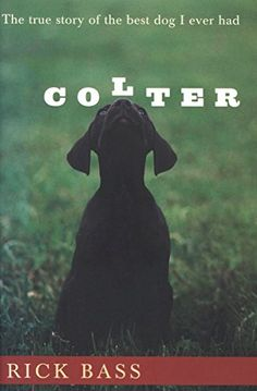 Buy Colter: The True Story of the Best Dog I Ever Had by Rick Bass and Read this Book on Kobo's Free Apps. Discover Kobo's Vast Collection of Ebooks and Audiobooks Today - Over 4 Million Titles! Dog Stories, True Stories, Dog Sounds, Dog Books, Book Challenge, Man And Dog, Reading Time, Book Signing, Book Of Life