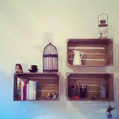 libraria, cassette della frutta