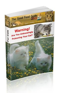Cat Nutrition Guide The Good Food Guide For Cats : Purrfect Homemade Cat Food Recipes Cat Care Tips, Pet Care, Cat Nutrition, Nutrition Guide, Homemade Cat Food, Dry Cat Food, Pet Food, Cat Ages, Food Humor