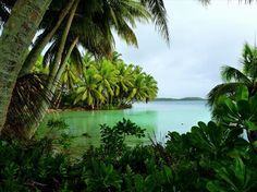 Uninhabited Strawn Island (Palmyra Atoll), Hawaii - Places to dream about