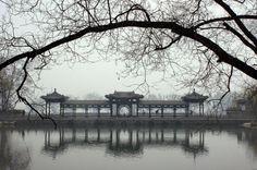 山西太原晋祠宾馆的九龙湖畔 Chinese Icon, Chinese Element, Chinese Style, Ancient Chinese Architecture, Asian Architecture, Suzhou, Old Building, Life Drawing, Asian Style