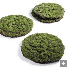 Large round or square DIY Moss mats to go under centerpieces
