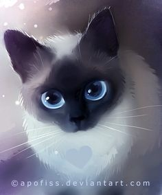 siamese by *Apofiss on deviantART
