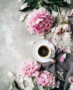 Coffee time... Photo by Evgeniya Prinsloo.