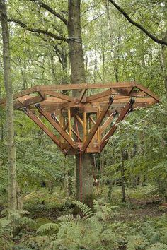 More ideas below: Amazing Tiny treehouse kids Architecture Modern Luxury treehouse interior cozy Backyard Small treehouse masters Plans How To Build Old rustic treehouse Ladder diy…More 7 6 6 8 9