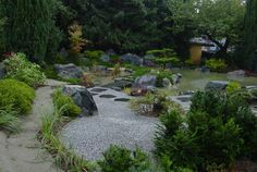 in Zusammenarbeit mit der Firma KOKENIWA gestalteten wir in Gießen  einen Moosgarten mit Teich und Wasserfall Stepping Stones, Beautiful, Outdoor Decor, Beautiful Images, Garden Art, Water Pond, Waterfall, Culture, Stair Risers