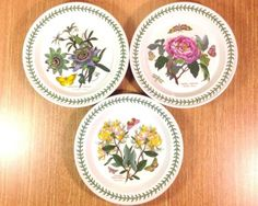 PORTMEIRION-The-Botanic-Garden-10-5-DINNER-PLATES-3-England-GOOD-READ