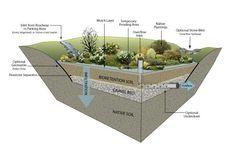 Rain Garden Cross Section | Environmental Services Kiosk | Bioretention Gardens
