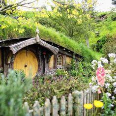 Auf den Spuren der #Hobbits reisen wir heute nach #Neuseeland! Bevor du zu deinem Auslandssemester, Praktikum oder Work & Travel aufbrichst, erfahre ein bisschen mehr über Kulturdschungel dieses einzigartigen Landes! #weltenfieber #kulturdschungel #auslandssemester #studiumimausland #praktikumimausland #worktravel #kultur #sitten #maora #kiwi #hobbit #herrderringe #tolkien #vulkan
