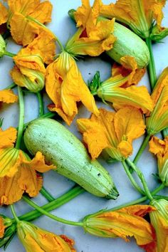 Zucchini and Blossoms Fruit And Veg, Fruits And Vegetables, Fresh Fruit, Food Photography Styling, Food Styling, Raw Food Recipes, Mexican Food Recipes, Zucchini Flowers, Vegetables Photography