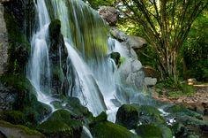 Waterfall - Sonsbeek park - Arnhem   by: Edouard Relou