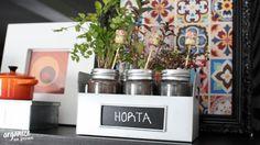 Decor Gastando Pouco | Mini Horta na Caixa