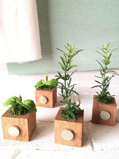☆小さな植木鉢マグネット4個セット*ハーブ.