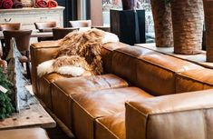 Tips That Help You Get The Best Leather Sofa Deal. Leather sofas and leather couch sets are available in a diversity of colors and styles. A leather couch is the ideal way to improve a space's design and th Cognac Leather Sofa, Leather Lounge, Brown Leather, Leather Recliner, Home Design Decor, House Design, Home Decor, Home Living, Living Room Sofa