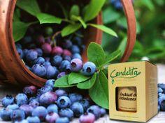 Vela aromatica Candelita NSC con su fragancia cocktail de arándanos