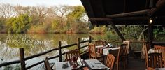 DIne out over looking the hippo pool and watch birds resting in the trees. One With Nature, Game Reserve, In The Tree, Bird Watching, Lodges, Where To Go, Safari, Africa, Trees