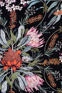 Ideas flowers black background painting colour for 2019 Art Floral, Floral Drawing, Floral Prints, Floral Patterns, Botanical Wallpaper, Botanical Drawings, Botanical Prints, Black Background Painting, Flowers Black Background