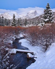 Winter on Glacier Creek photo in Rocky Mountain National Park