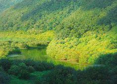 AN JUNG-HWAN - Águas calmas Óleo
