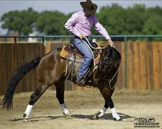 Riding Exercise #10: Serpentine Exercise  Goal: To be able to trot the horse all over the arena, bending him from side to side while he stays soft on the reins, not raising his head and neck higher than his withers.   More about the exercise: https://www.downunderhorsemanship.com/Store/Search/intermediate