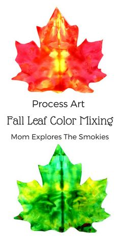 Fall Leaf Color Mixing, Mom Explores The Smokies