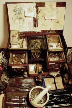 """""""Fungi research receptacle: The Research case of one Lubomierz Pawlowski, Polish born Naturalist"""" Alex CF Antique Curio Cabinet, Curio Cabinets, Wicca, Spiderwick, Cabinet Of Curiosities, My New Room, Fungi, Natural History, Oeuvre D'art"""