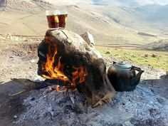 Cay kurdi