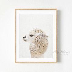 Baby Alpaca Print, Farm Animal Nursery Art, Baby Animals Nursery Decor Alpaca Wall Art by Amy Peterson – Amy Peterson Art Studio™ - Baby Animals